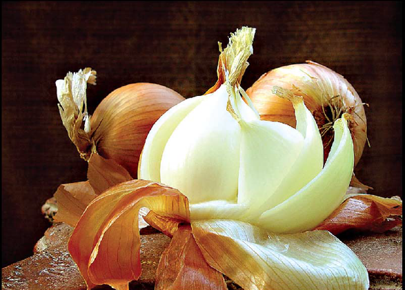 Let's Talk About Onions