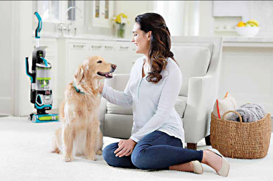5 Tips To Eliminate Pet Hair In Your Home – Pet Points