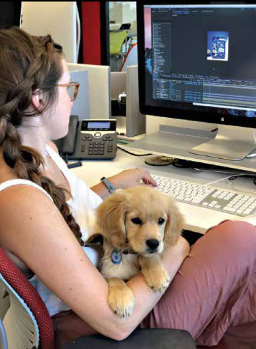 Got Stress? Bringing Your Pet To Work Can Help