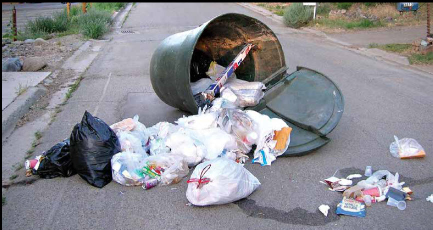 Garbage Days – Dog Barker