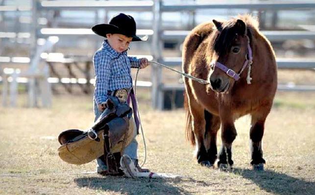 Sanitize ~ Separate ~ Saddle Up