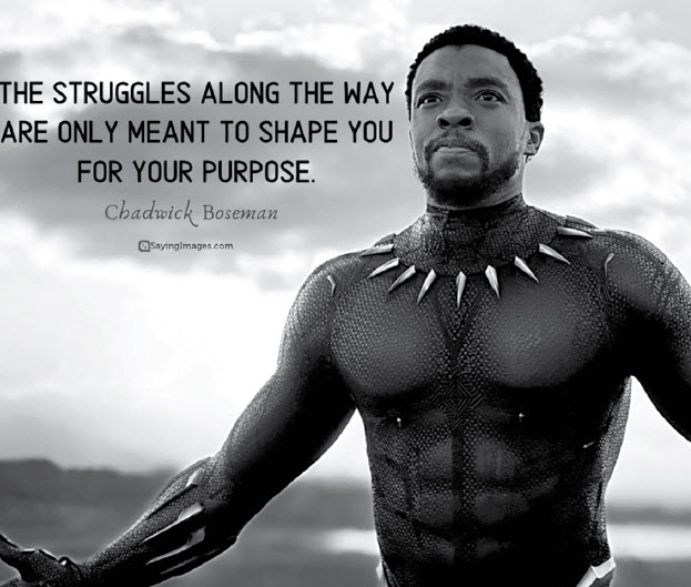 Chadwick Boseman: Nov 29, 1976 – Aug 28, 2020 May He Rest In Peace!