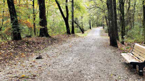 Athens Secures Additional Grant Money For Swan Creek Greenway