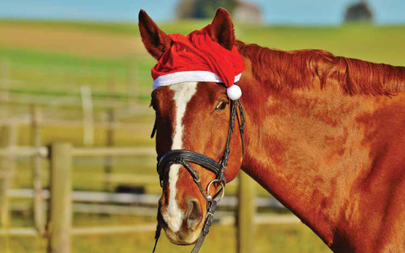 Merry Christmas Partner!